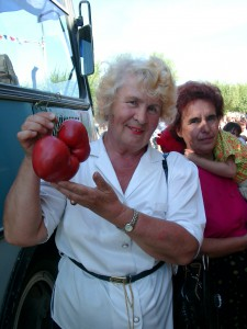 2004 Михайлова 1510