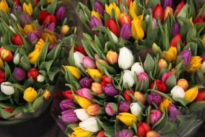 цветы ярмарка 8 марта
