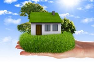 благоустройство ИЖС дом жилье